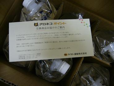 P1150120.JPG